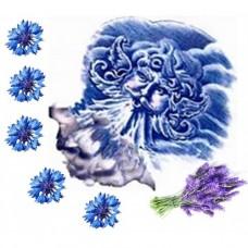 Гидролат Синие ветры Тавриды (василек+лаванда), 100 мл (стекло)