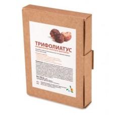"""Натуральный шампунь """"Трифолиатус"""" (порошок S. Trifoliatus), 100 г"""
